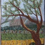 Fields of Kibbutz Shluhot